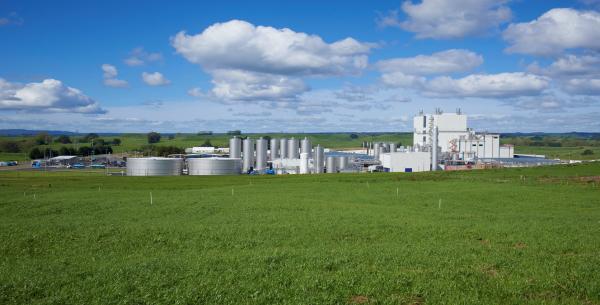 Litchfield Dairy Factory